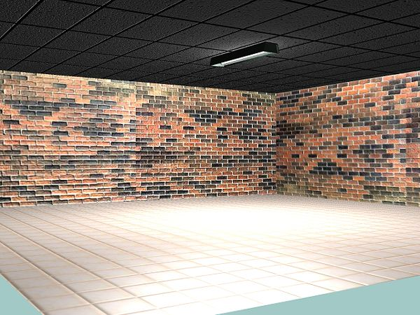 Room with Brick Walls